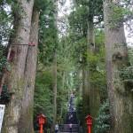箱根神社参道2